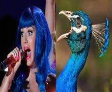 Bu benzerliklere çok güleceksiniz