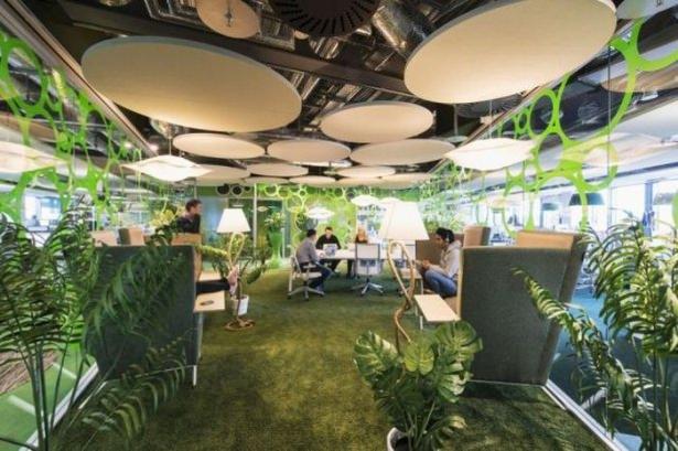 Google'ın Dublin'deki ofisine içeriden bakın 30