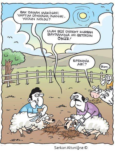Birbirinden komik kurban karikatürleri 20