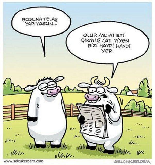Birbirinden komik kurban karikatürleri 21