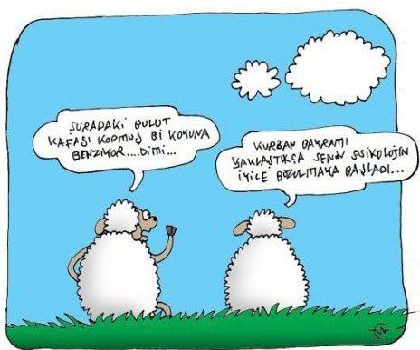Birbirinden komik kurban karikatürleri 9