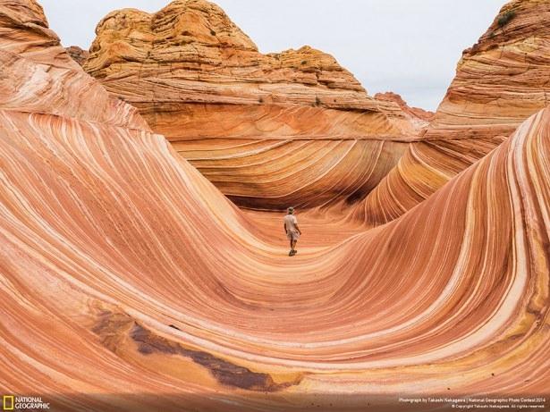 NG'den en iyi doğa fotoğrafları 8