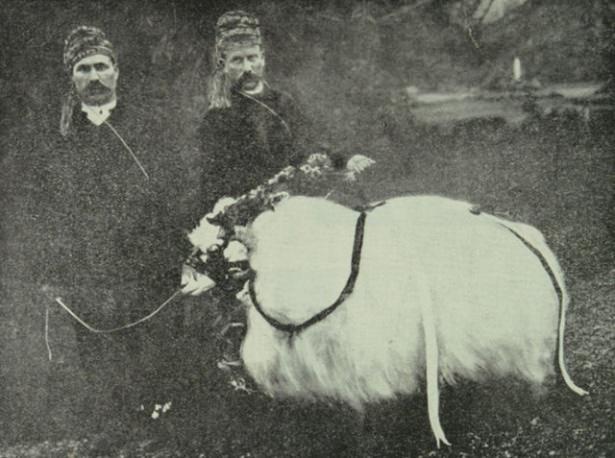 Osmanlı'da Kurban Bayramı 25
