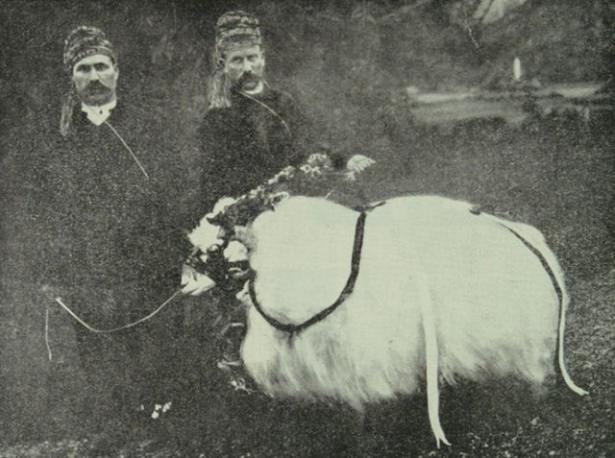 Osmanlı'da Kurban Bayramı 4