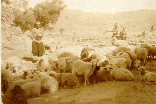 Osmanlı'da Kurban Bayramı 57