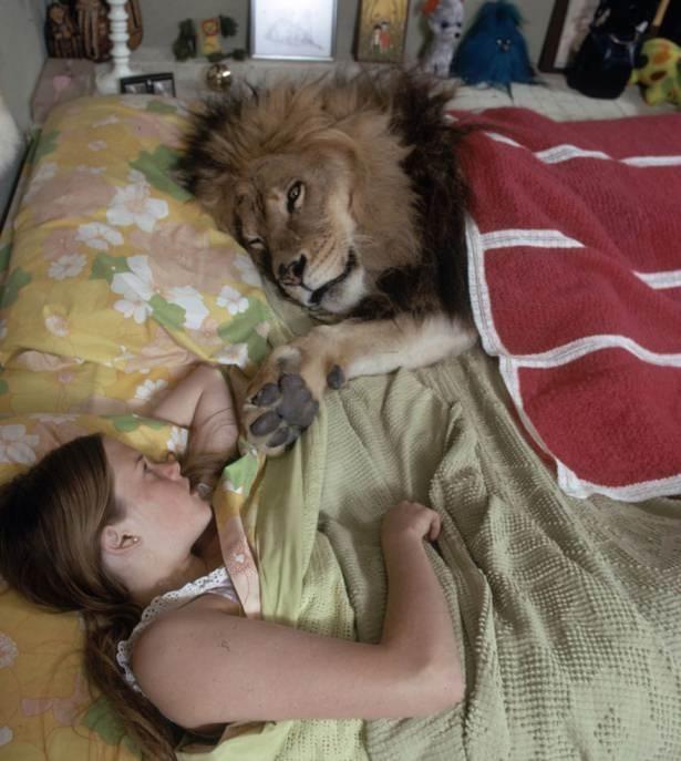 Vahşi hayvanlar ile yaşayan korkusuz insanlar 1
