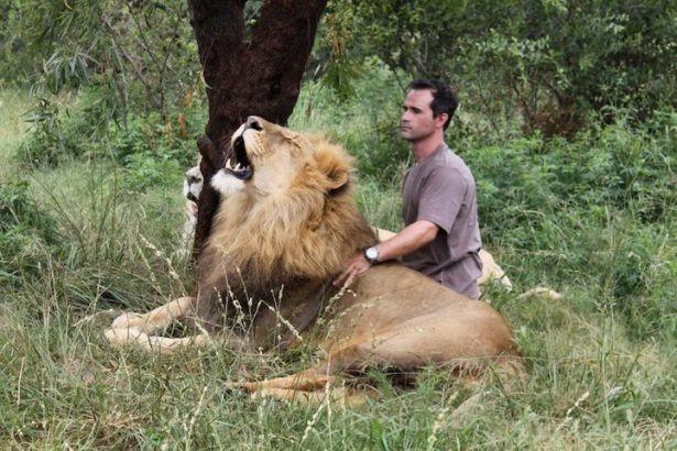 Vahşi hayvanlar ile yaşayan korkusuz insanlar 15