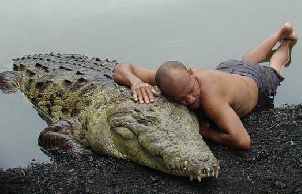 Vahşi hayvanlar ile yaşayan korkusuz insanlar 17