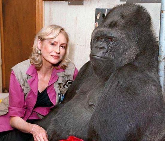 Vahşi hayvanlar ile yaşayan korkusuz insanlar 30