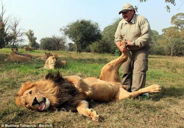 Vahşi hayvanlar ile yaşayan korkusuz insanlar 36