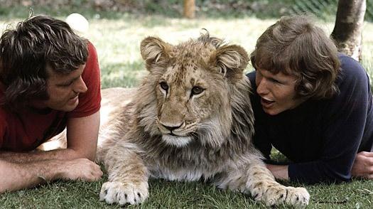 Vahşi hayvanlar ile yaşayan korkusuz insanlar 37