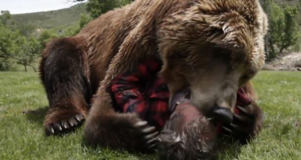 Vahşi hayvanlar ile yaşayan korkusuz insanlar 47