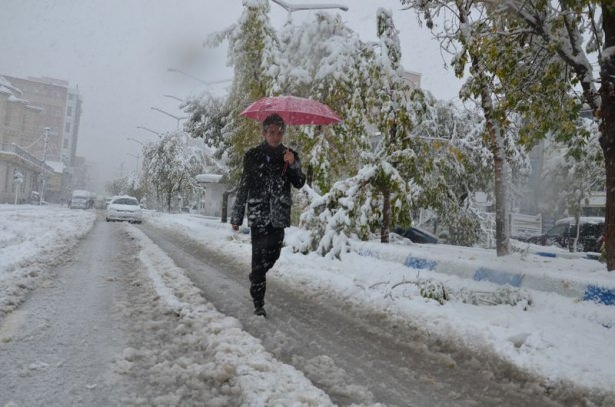Türkiye'den kar manzaraları 26