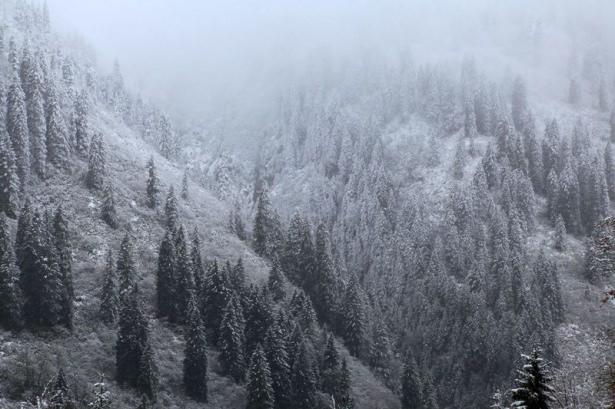 Türkiye'den kar manzaraları 40