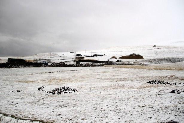 Türkiye'den kar manzaraları 54