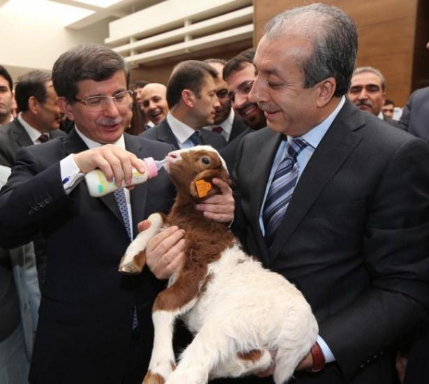 Görmediğiniz fotoğraflarla Ahmet Davutoğlu 36