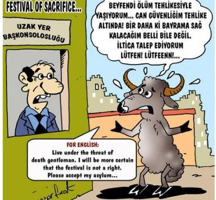 Kurbanlık karikatürler tam şenlik! 16