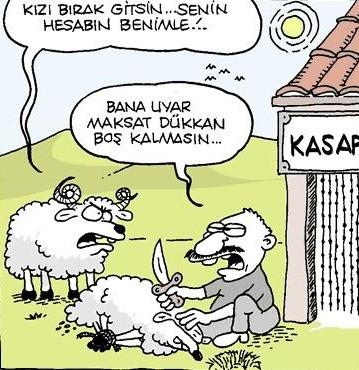 Kurbanlık karikatürler tam şenlik! 19