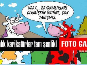 Kurbanlık karikatürler tam şenlik!