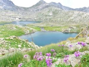 Verçenik Dağı'nın göllerine yoğun ilgi