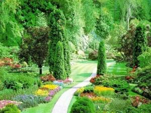 Cenneti anlatan ve müjdeleyen ayetler