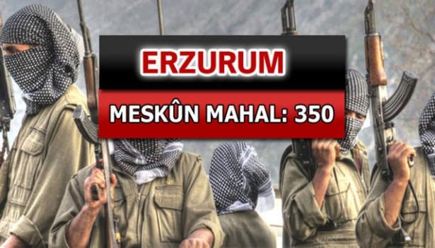 İşte PKK'lı hainlerin il il dağılımı 30