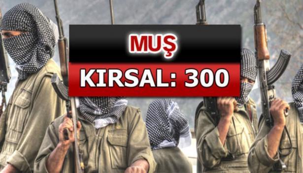 İşte PKK'lı hainlerin il il dağılımı 55
