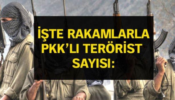 İşte PKK'lı hainlerin il il dağılımı 78