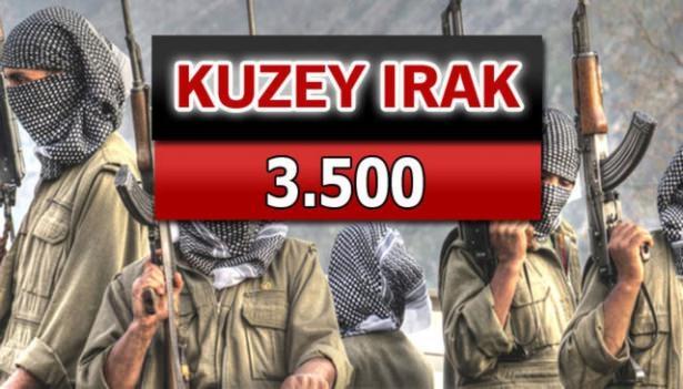 İşte PKK'lı hainlerin il il dağılımı 83