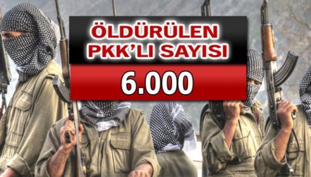 İşte PKK'lı hainlerin il il dağılımı 87