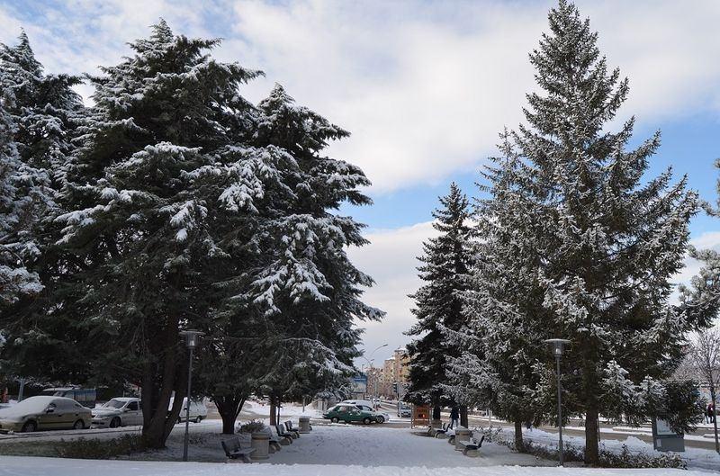 İşte yurttan kar manzaraları... 15