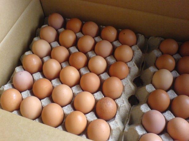 Yumurta hakkında ilginç bilgiler 7