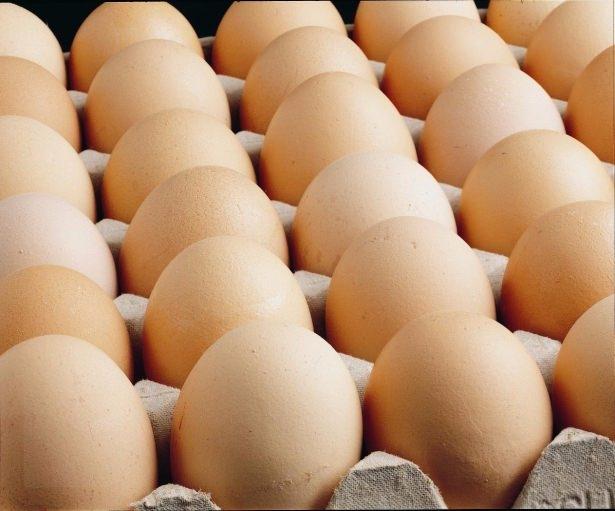 Yumurta hakkında ilginç bilgiler 9