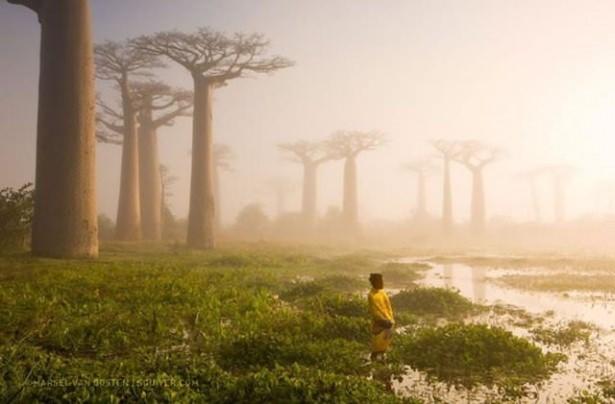 National Geographic en iyileri seçti 7