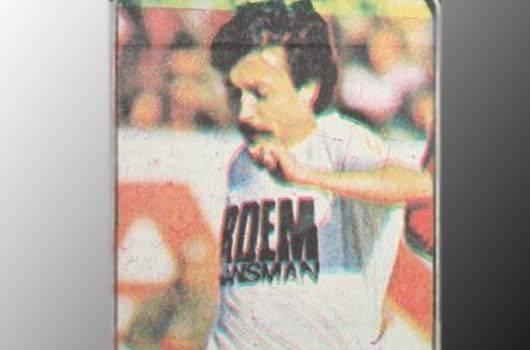 Süper Lig'in gol kralları 41