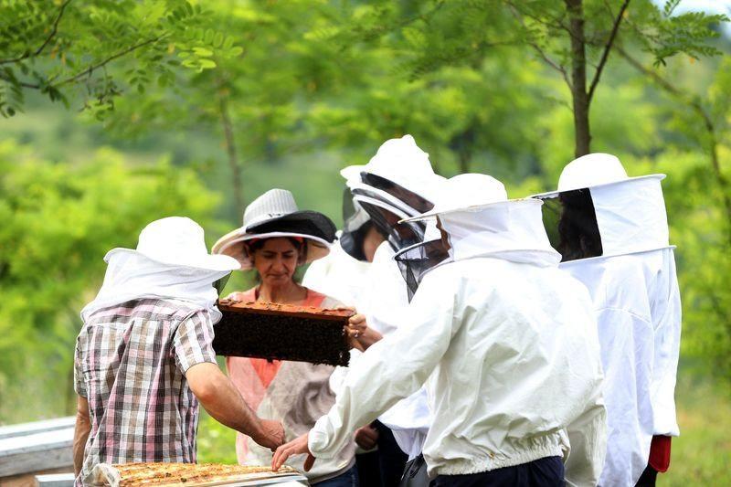 'Sokmayan arı'ya yoğun talep 6