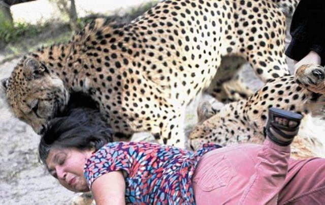 Vahşi yaşamın acımasızlığı 72