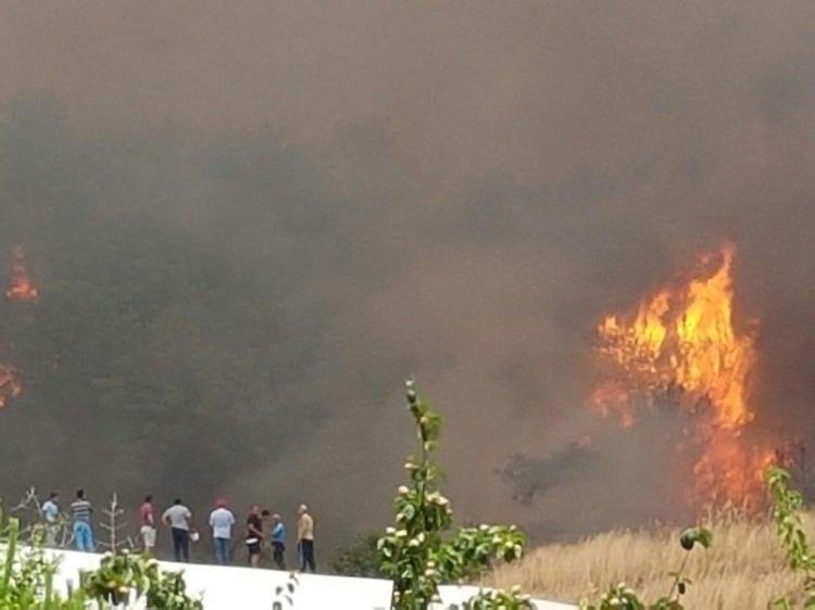 Tatil cenneti alev alev yanıyor! 25