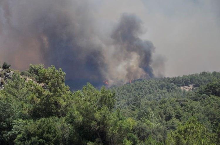Tatil cenneti alev alev yanıyor! 27