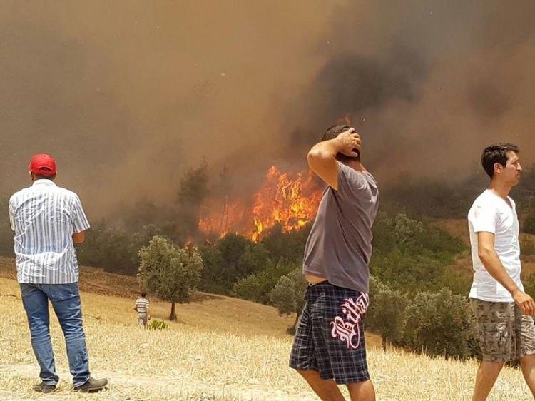 Tatil cenneti alev alev yanıyor! 28
