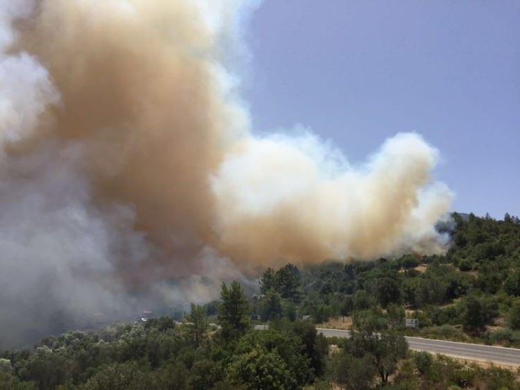 Tatil cenneti alev alev yanıyor! 29
