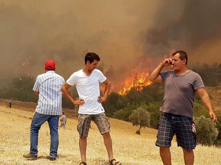 Tatil cenneti alev alev yanıyor! 4