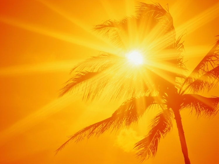 Aşırı sıcaklara karşı alınacak önlemler 5