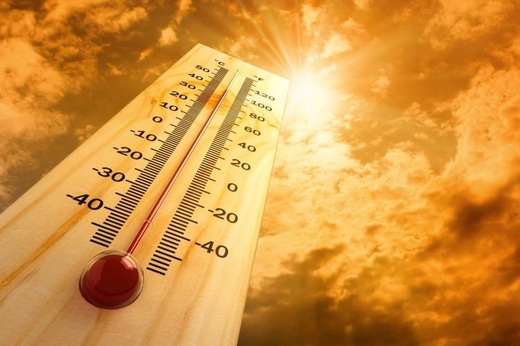 Aşırı sıcaklara karşı alınacak önlemler 8
