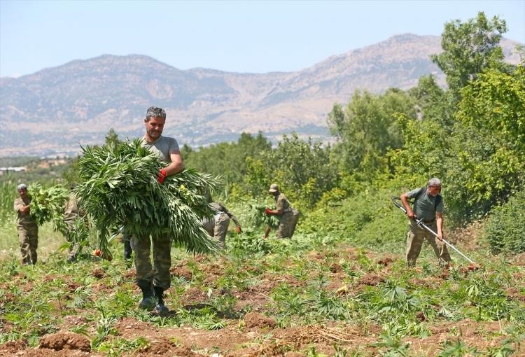 PKK'dan hain talimat: Hepsini yakın 10