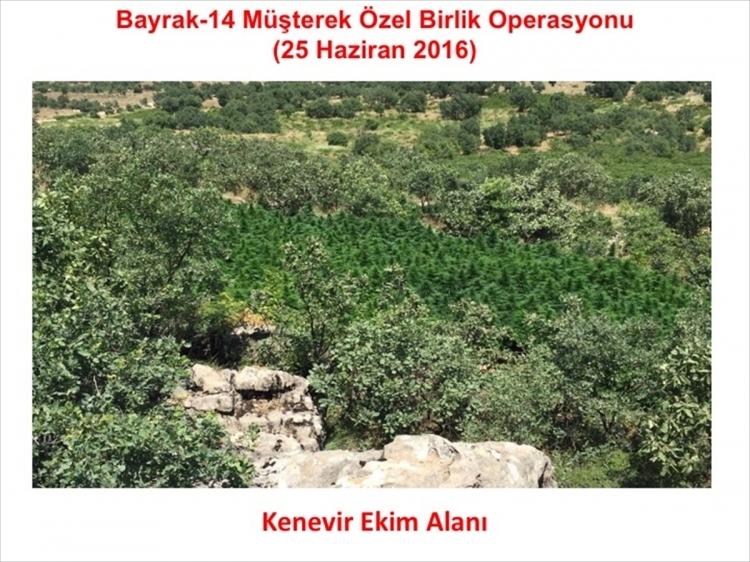 PKK'dan hain talimat: Hepsini yakın 15