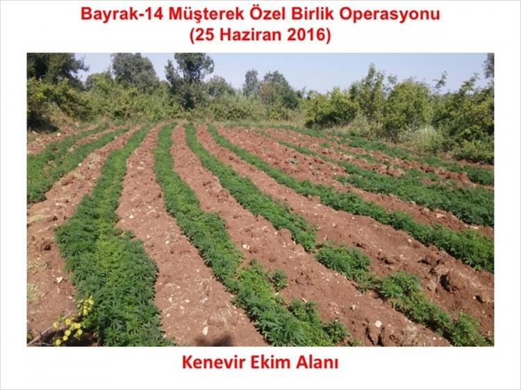 PKK'dan hain talimat: Hepsini yakın 35