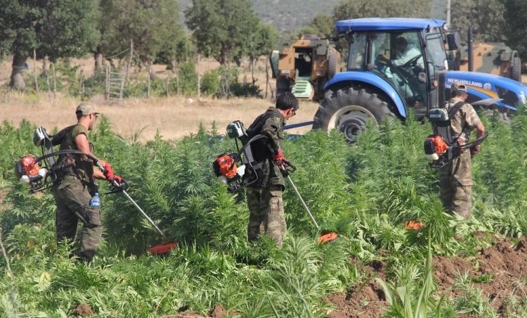 PKK'dan hain talimat: Hepsini yakın 6