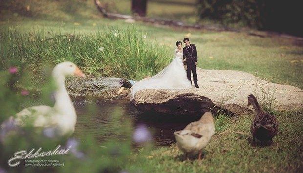 Bu düğün fotoğrafları ezber bozuyor! 3
