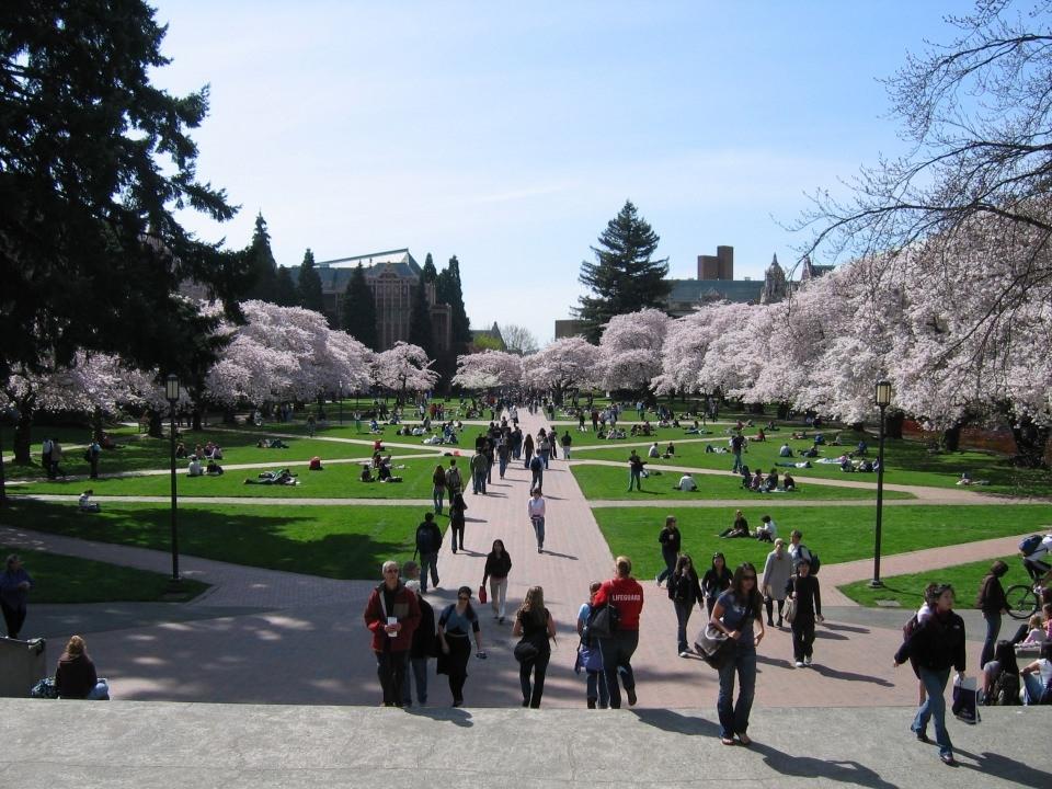 Dünyanın en iyi 100 üniversitesi 15